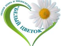 В Керчи объявлена акция «Белый цветок»