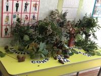 «Яркие и душистые» выставка букетов